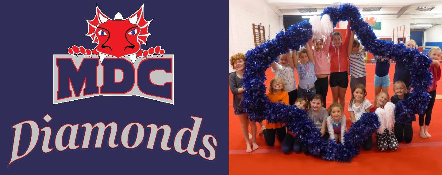 new cheer logo